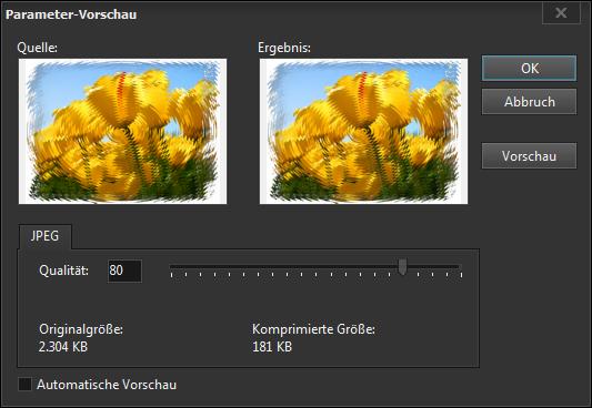 JPEG-Bildspeicherung - Erweitertes Dialogfeld